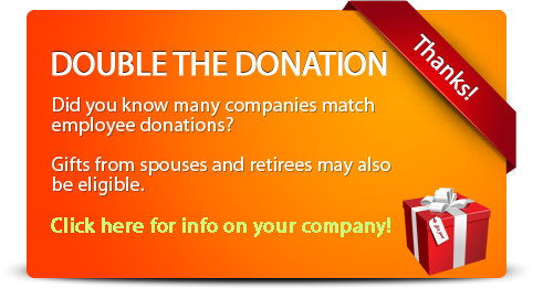 double-the-donation-detailed-orange